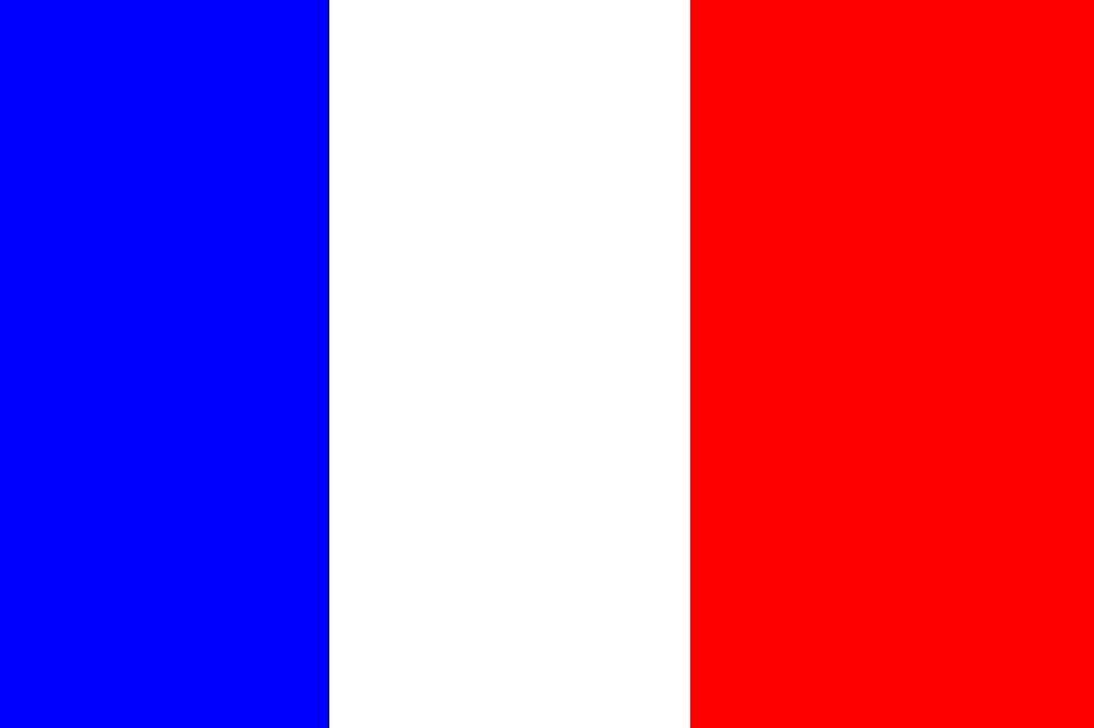 法国是欧盟三大核心成员国之一,因此注册法国商标是进入欧盟市场的重要步骤。